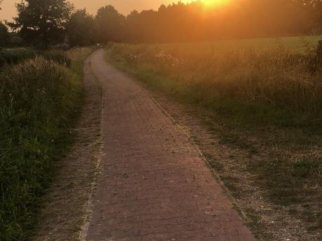 Endspurt: Goldener Herbst auf der Friesenroute