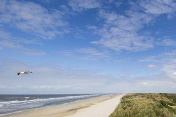 Watt-Erlebnisse auf Langeoog zwischen Ostfriesland und Nordsee
