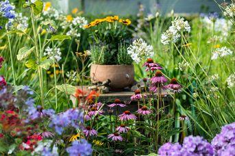 Gartenträume im Ammerland klassisch