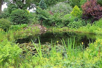 Garten von Familie Kruse-Pranger
